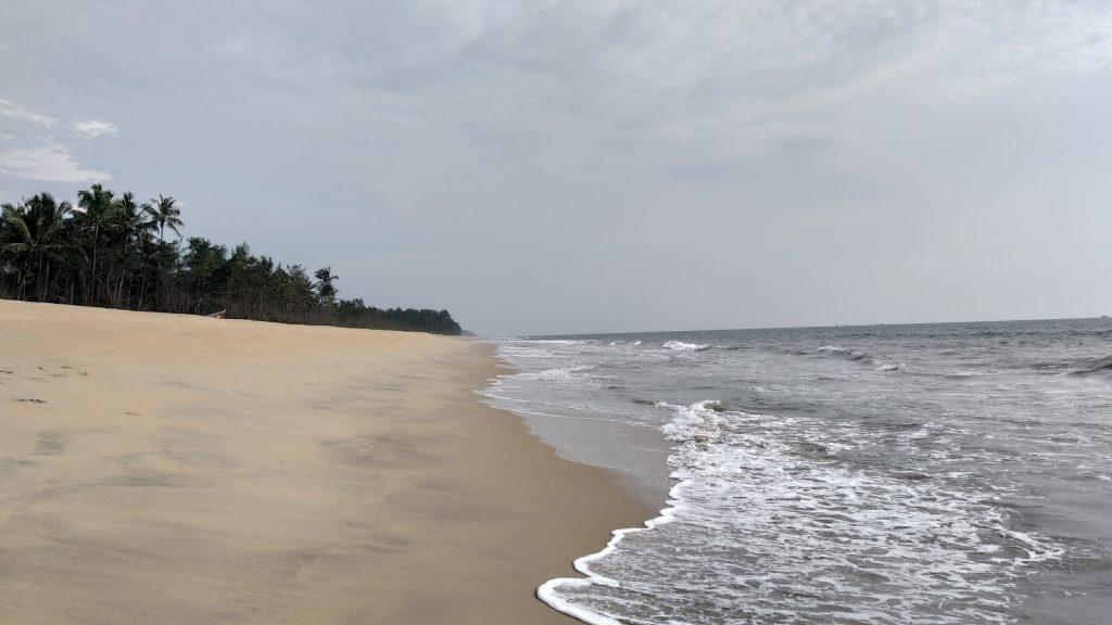 The vast beach - survival island